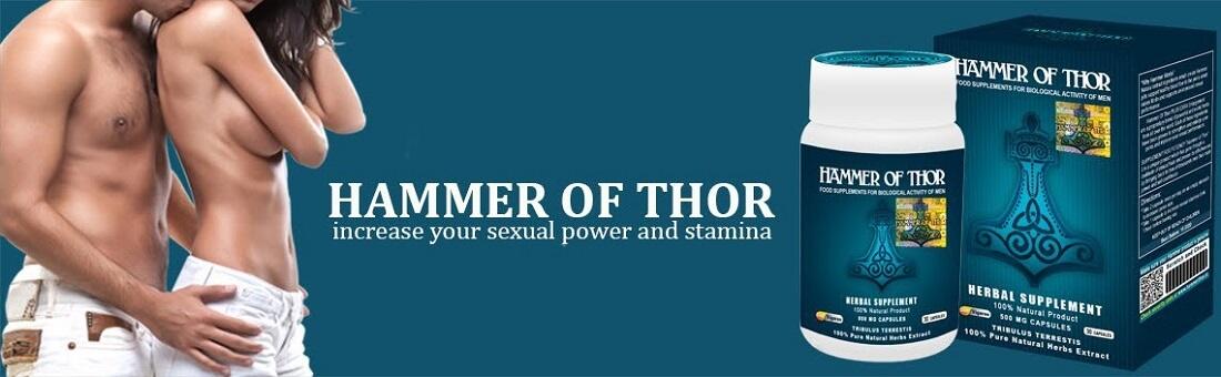 Manfaat Hammer of Thor Forex — ereksi kelamin jadi lebih lama serta lebih kokoh