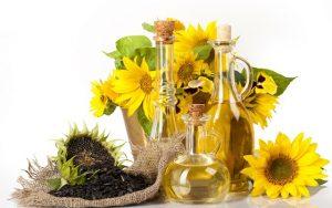 Minyak Bunga Matahari dan Jagung — Komposisi Salep Varikosette