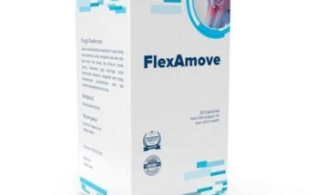 Flexamove Indonesia