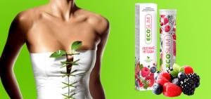 Jual Eco Slim — Harga Eco Slim di Indonesia