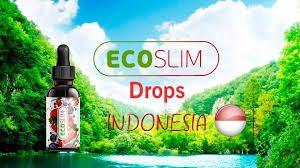 Testimoni Ecoslim — Pelangsing Eco Slim