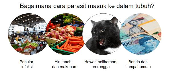 Bagaimana cara parasit masuk ke dalam tubuh