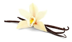 Vanilla — Dalam banyak hidangan lezat, bubur vanilla aromanya manis